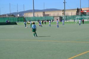 Son Oliva-At (4)